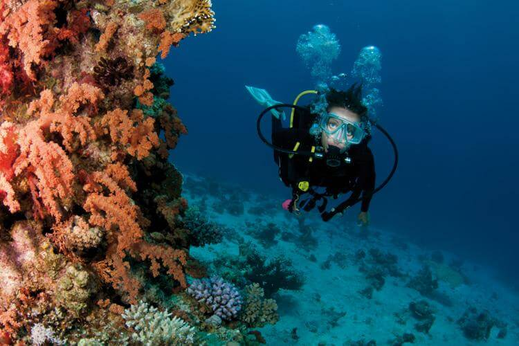 World's Best Diving Destinations