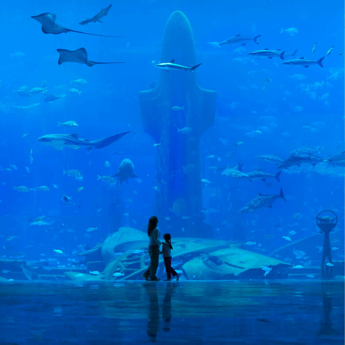 Atlantis On The Palm Jumeirah