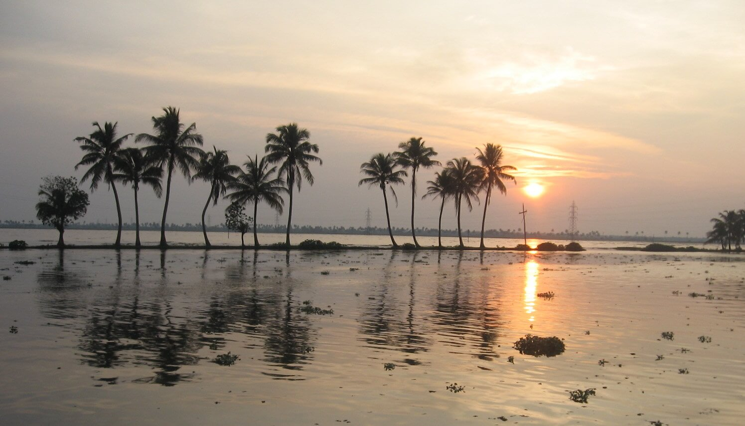Alappuzha - Backwaters of Kerala