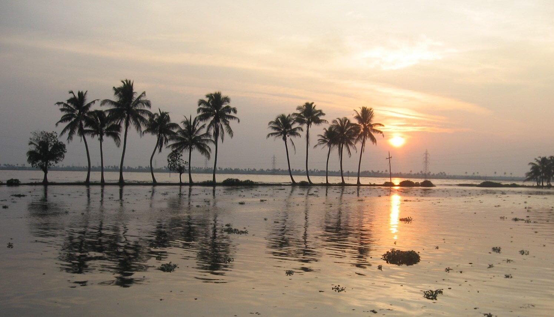 The Backwaters Of Kerala For Honeymooners Thomas Cook