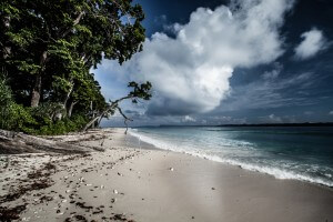 Tropical island of Havelock in Andaman, India