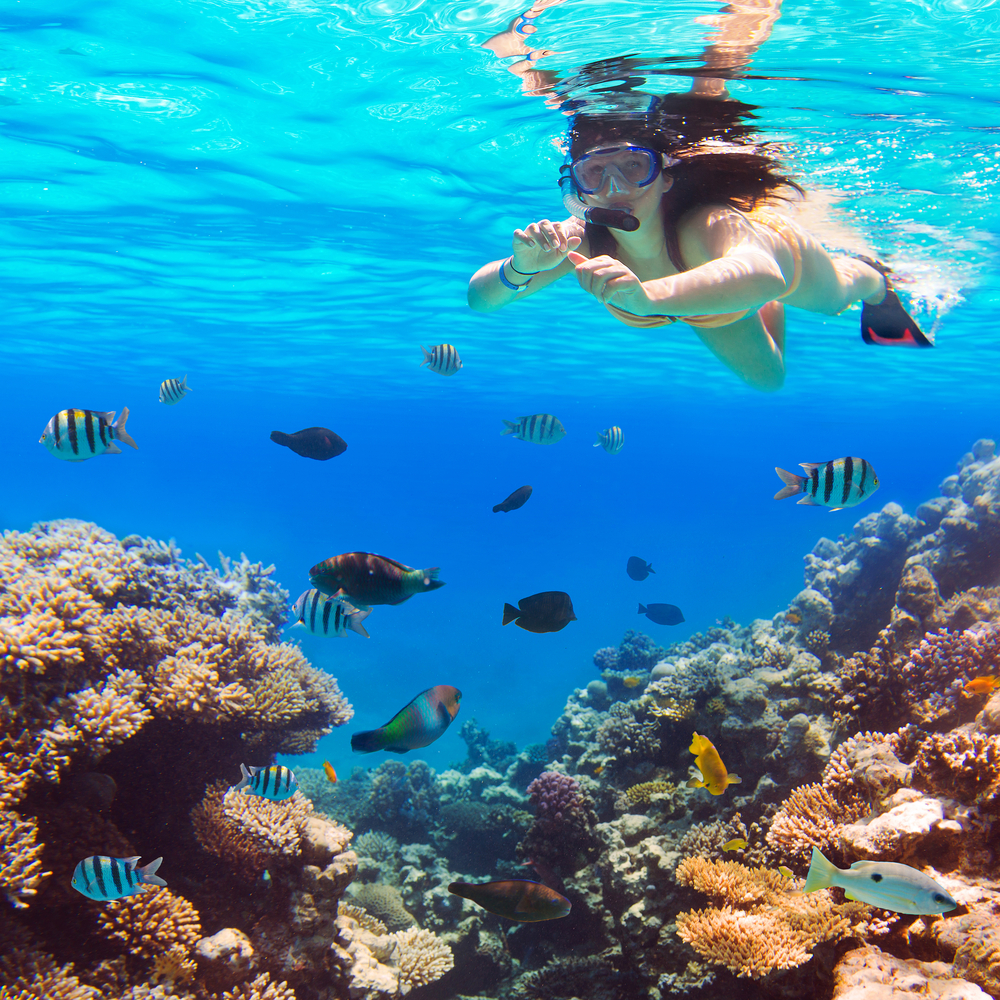 Seduction Point - Places for Scuba Diving in Andaman
