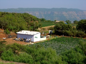 Beautiful Strawberry farm in Indian hill Station - Mahabaleshwar