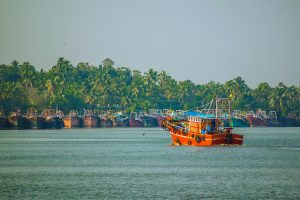 Make Your Way To The Exotic Kerala Backwaters - Thomas Cook India