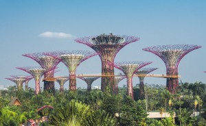 SINGAPORE - Silhouette of Gardens by the Bay