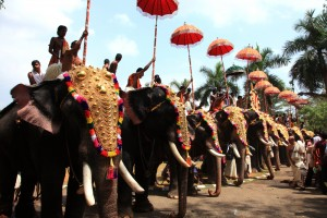 Experience The Magic Of Temple Festivals In Kerala
