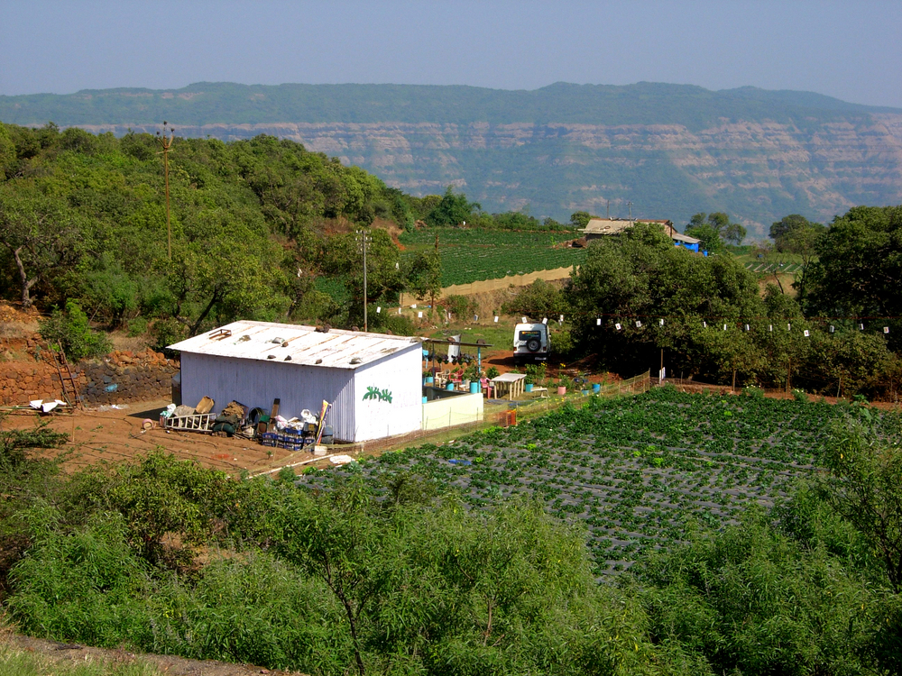 Hill Station Mahabaleshwar