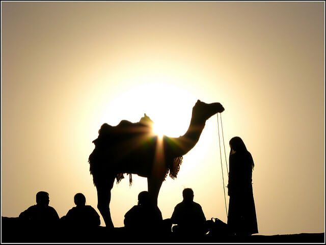Enjoy Exotic Camel Safari in Rajasthan - Thomas Cook India Travel Blog