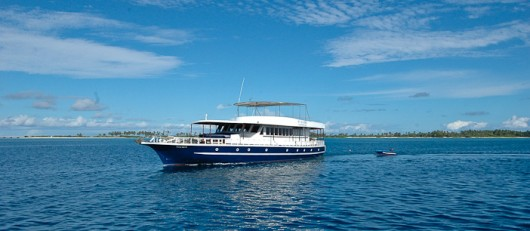 Sea safari Maldives