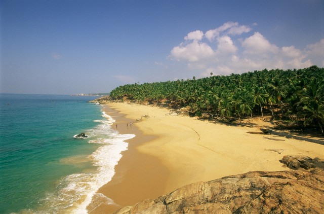 ca. 2005, Kerala state, India --- Beach and coconut palms, Kovalam, Kerala state, India, Asia --- Image by © Gavin Hellier/Robert Harding World Imagery/Corbis