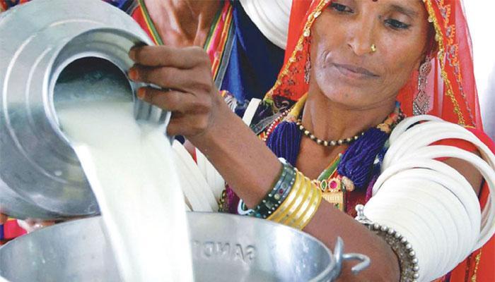 Amul - Gujarat