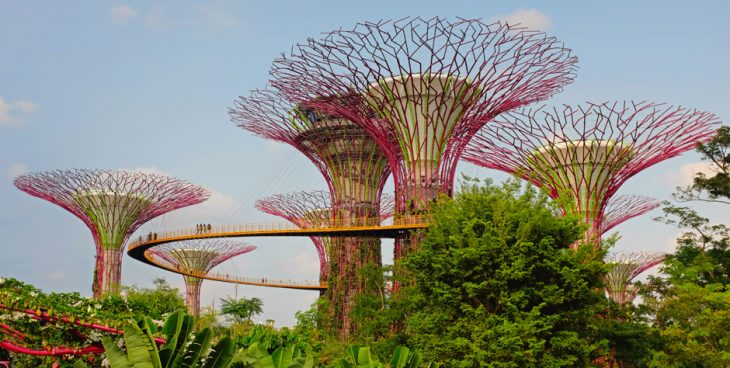 A network of modern greenhouses and waterfront parks containing super tress lined with solar cells
