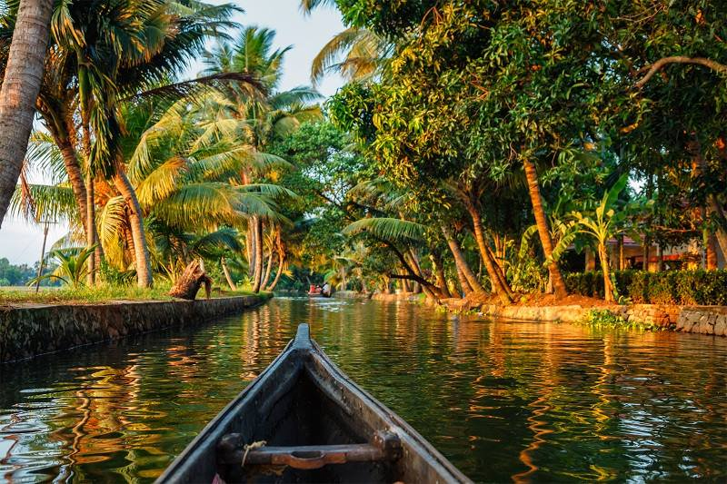 How to Plan a Perfect Holiday Trip to Kerala? - Thomas Cook India Blog