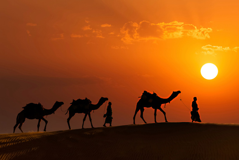 The Land of Maharajas: 8 Places to Visit in Rajasthan - Thomas Cook Blog