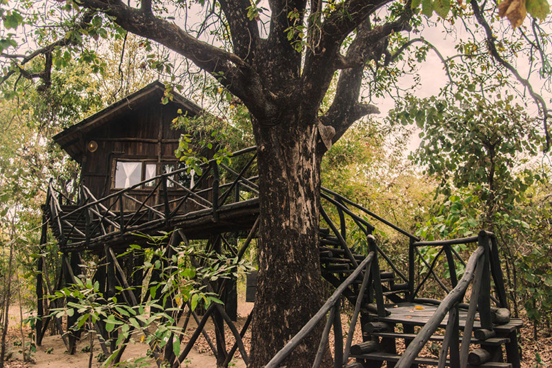 The Tree House Hideaway Resort, Bandhavgarh National Park