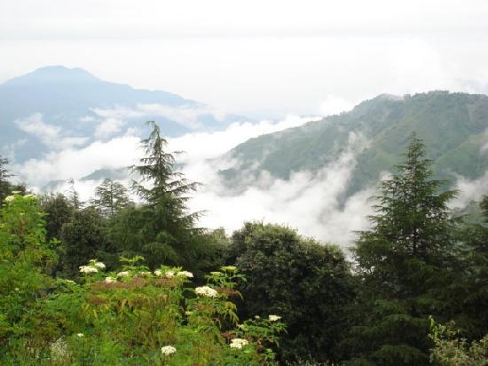 Chail in Himachal Pradesh