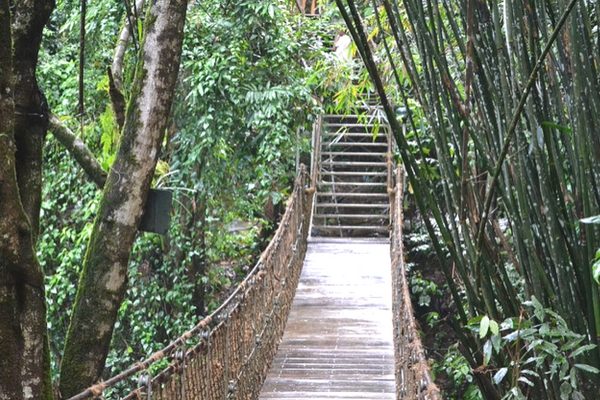 Vythiri, Kerala - Hill stations in south india