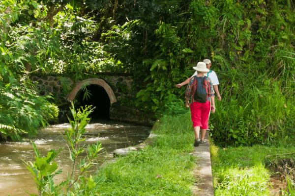 Walk in Bali