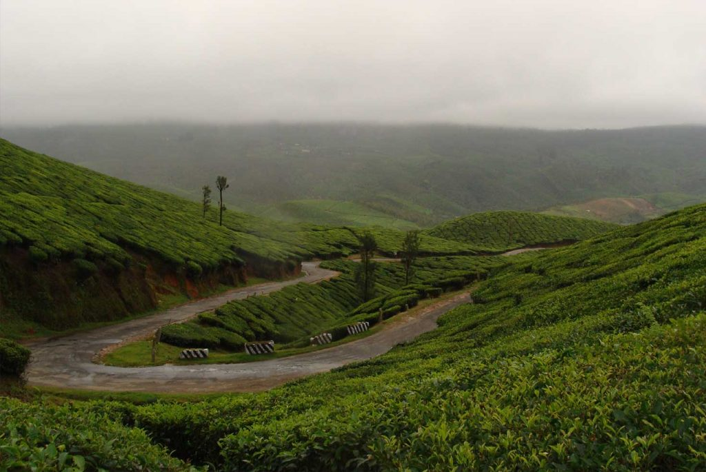 Top 10 Hill Stations In Kerala