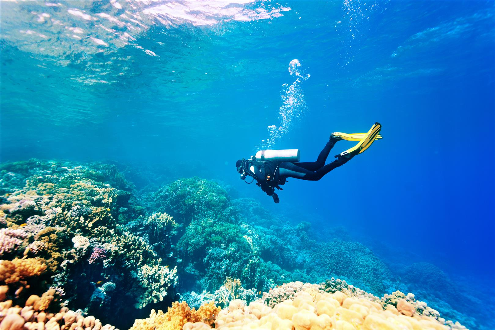 6 Best Places for Scuba Diving in Andaman