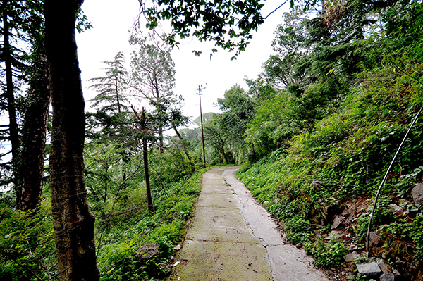 10 Most Famous Hill Stations in Himachal Pradesh