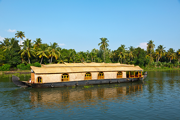 Top 30 Things to do in Kerala