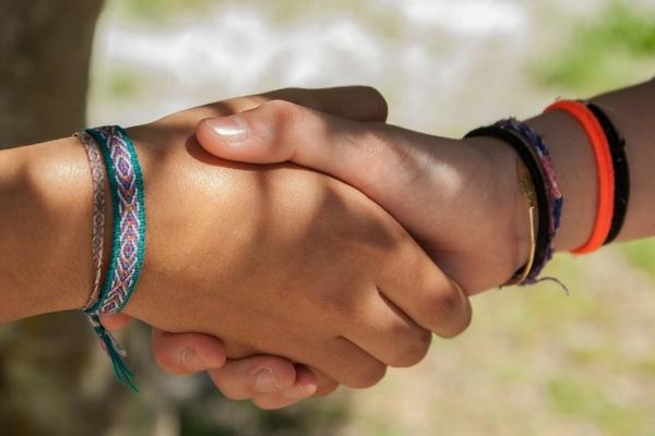 The Shake Hand
