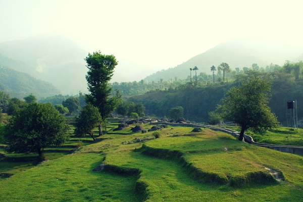 Palampur, North India