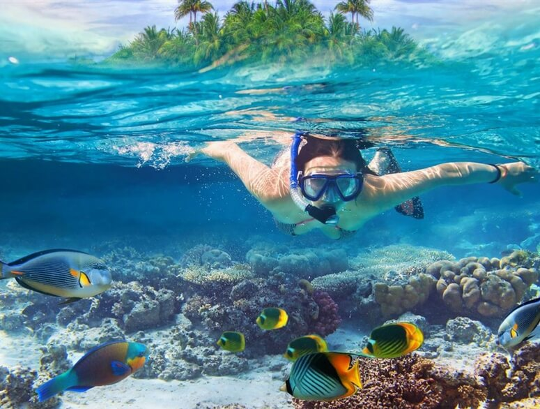 Because snorkeling in Andaman is almost religious to diving enthusiasts. So read on to find out the best places for snorkeling in Andaman.