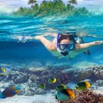 6 Best Places For Snorkeling In Andaman