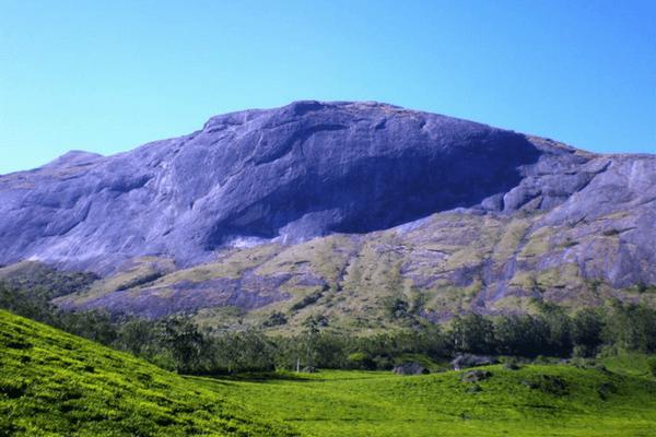 Anamudi Peak, Places to visit in Munnar