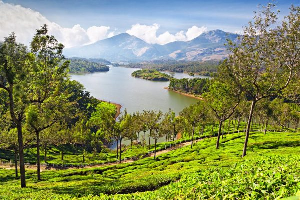 Photo Point, Munnar