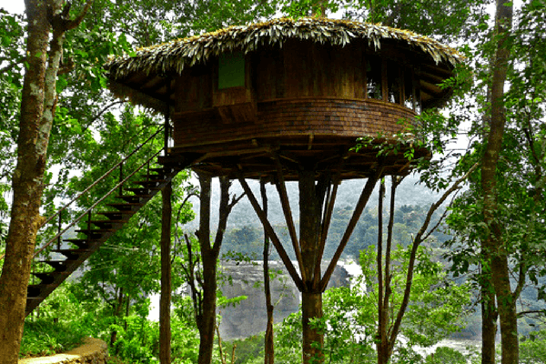 Rainforest Resort, Athirapally
