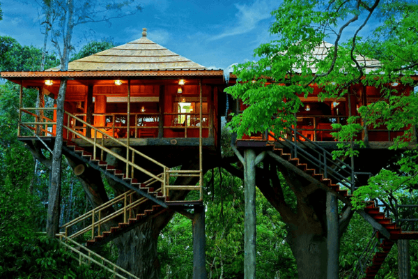 Ranger Wood Nature Castle Resort, Thekkady
