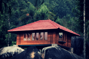 Looking To Stay In A Tree House In Kerala? 15 Best Tree House Resorts