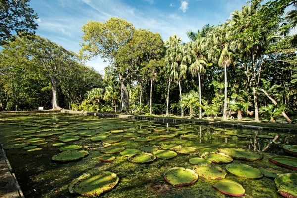 10 Reasons Why Mauritius Is Every Couple's Favourite