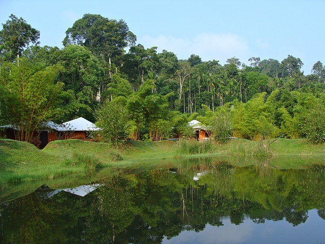 Coorg, New Year Destination in India