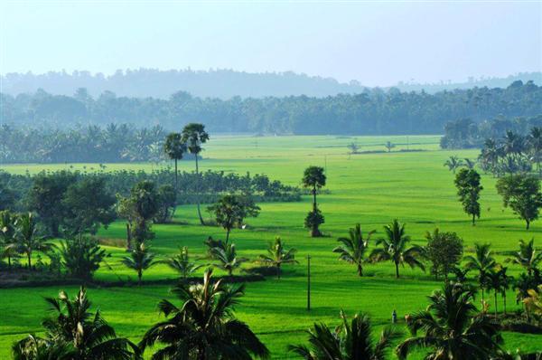 Palakkad, Kerala