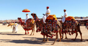 Why Rajasthan is The Perfect Destination For Solo Travellers