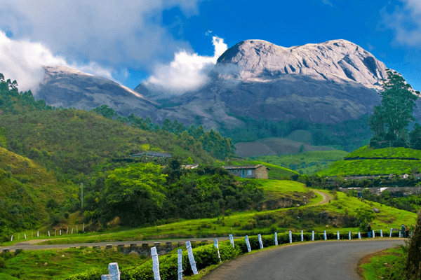 Munnar - Most Romantic Honeymoon Destinations In India