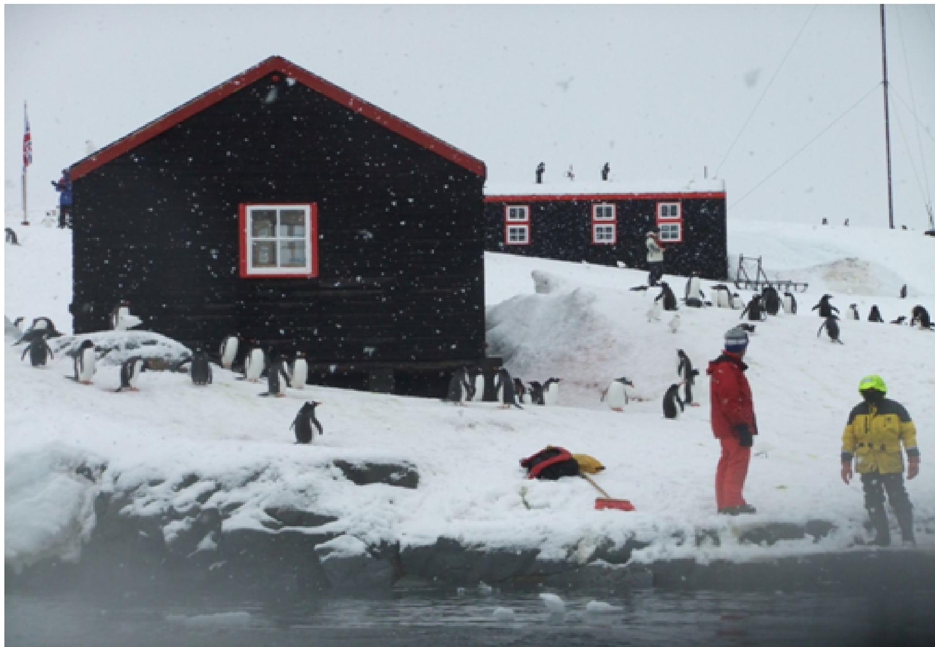 Sending a Postcard from Port Lockroy