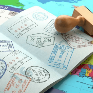 No Need To Visit Travel Agents For These Country Visas Benefits Of E-Visa And Visa On Arrival