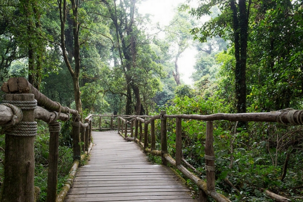 Doi Inthanon National Park - 100 Places To Visit In Thailand