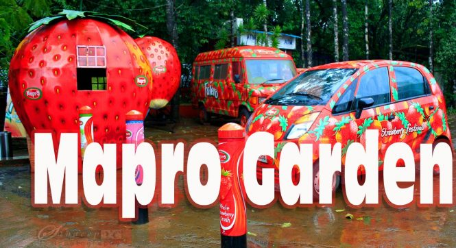 Mapro Garden - Places to Visit in Mahabaleshwar