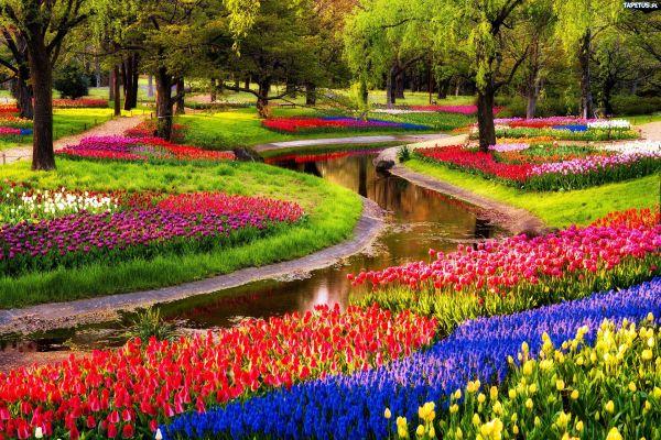 Keukenhof Park, The Netherlands