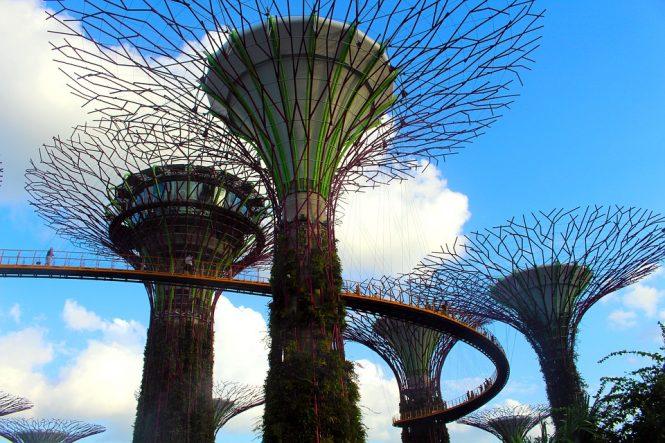 Botanical gardens - romantic places in singapore