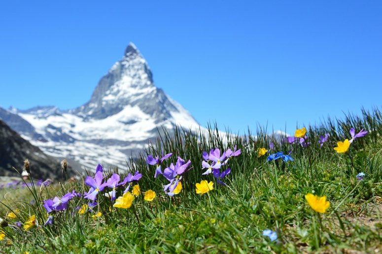 Memorable Things to Do in Switzerland for a Lifetime Experience
