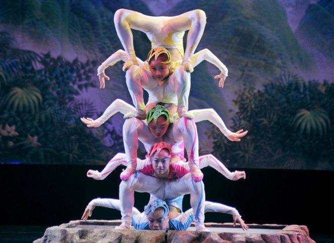 Live Performances-China's Nightlife