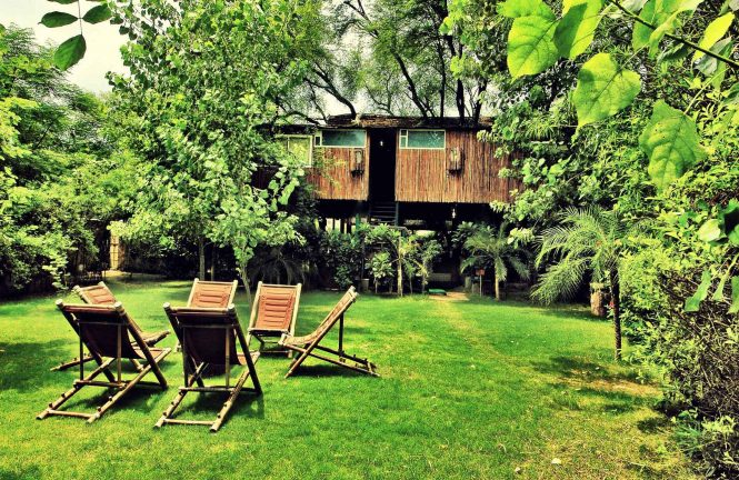 Best Tree Houses in India- The Tree House Resort
