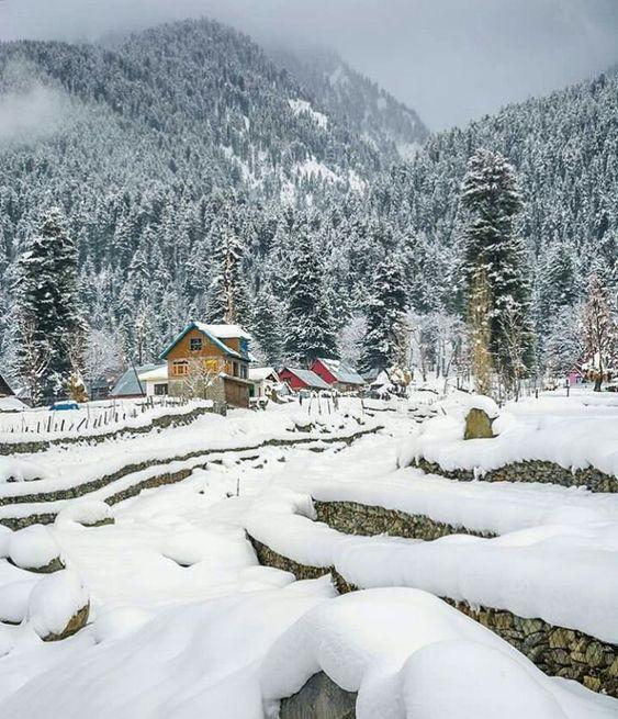 Frozen beauty, Kashmir